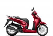 Pearl Splendor Red
